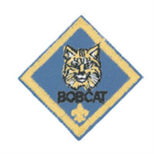 Bobcat Rank Here